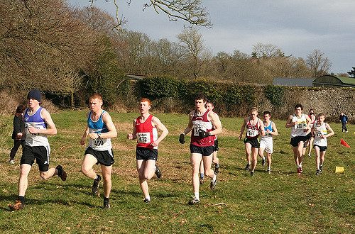 Leinster Senior Cross Country